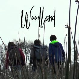 Woodland – Film