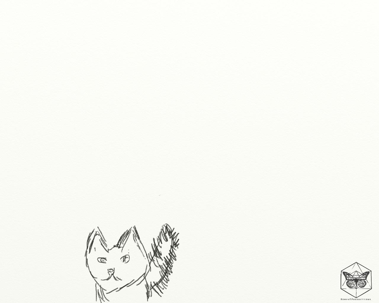 Kat schets