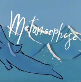 Metamorphose – 2D Animatie
